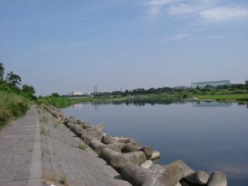 Photo_297