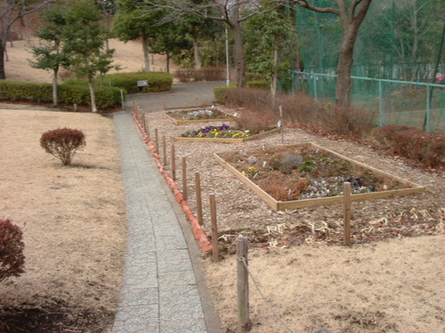 モアクレ花壇