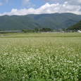 山と田園風景