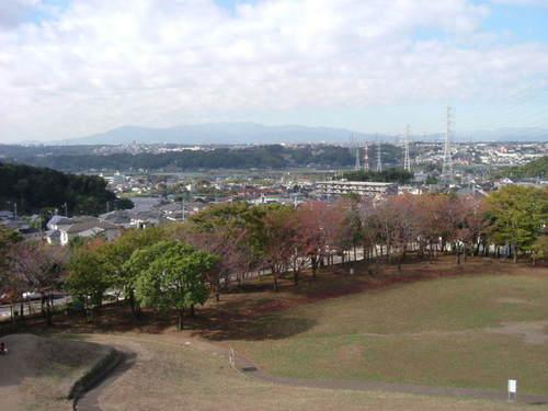 2003_01010004
